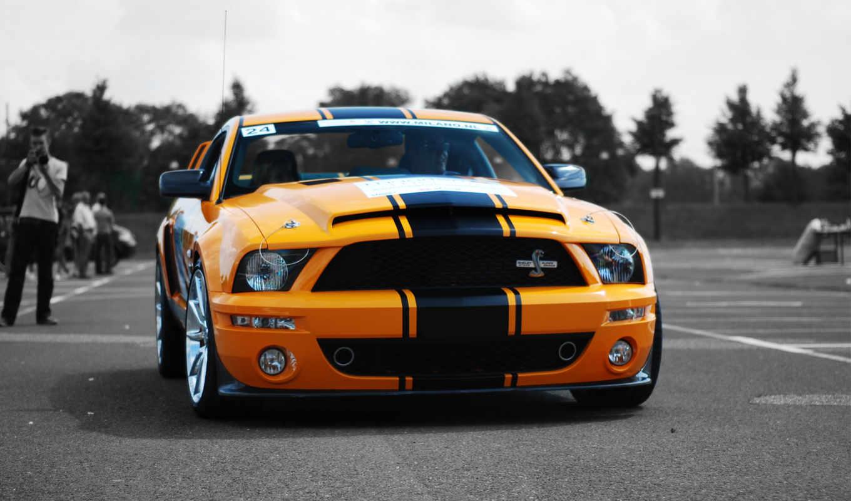 ford, mustang, полосой, черной, desktop, cars, разрешении, super, картинку, snake,