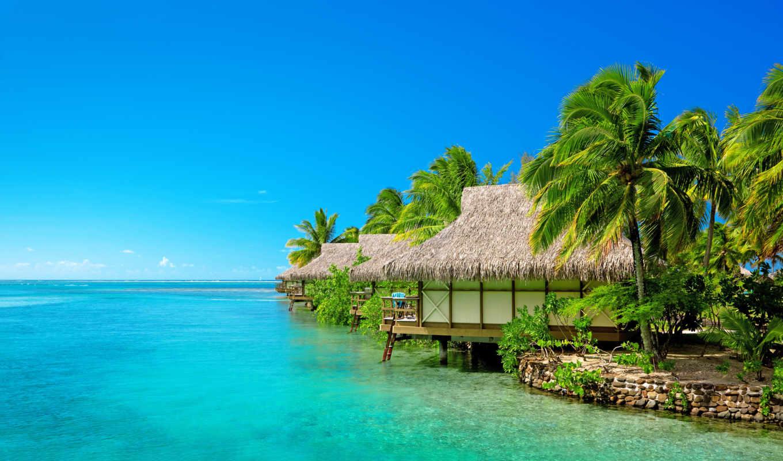 island, slave, thompson, claire, holiday, services, bdsm, win, associates, пейзаж, resort, an, cocktail, voeux, ebook, envoyez, consulting,