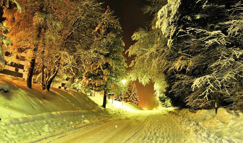 зима, дорога, resolution, фонари, деревья, снег, заснеженная, nature, night, свет, background, download, desktop,
