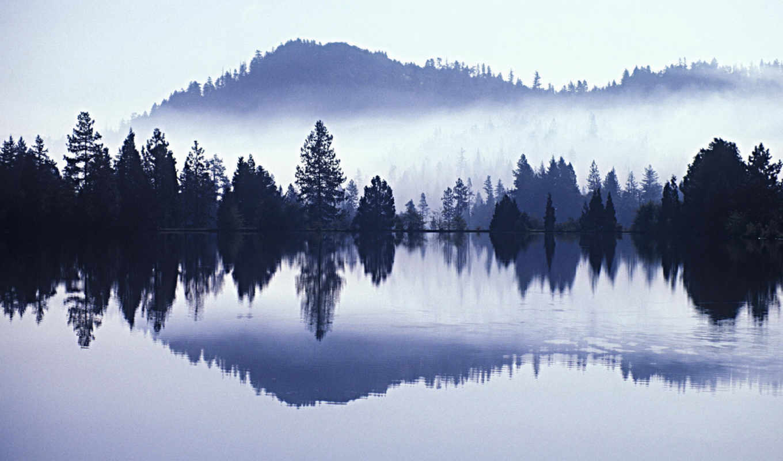 утро, вода, природа, горах, туман, туманное, lake, отражение, деревья, free, mist, widescreen,