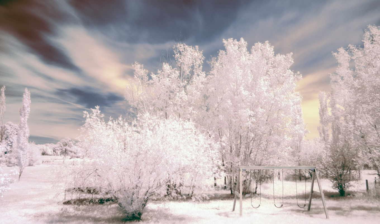 winter, снег, trees, black, осень, hits, иней,