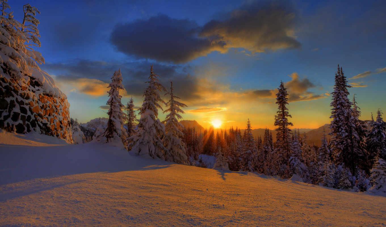 winter, закат, снег, небо, елки, лес, облака, природа, красавица,