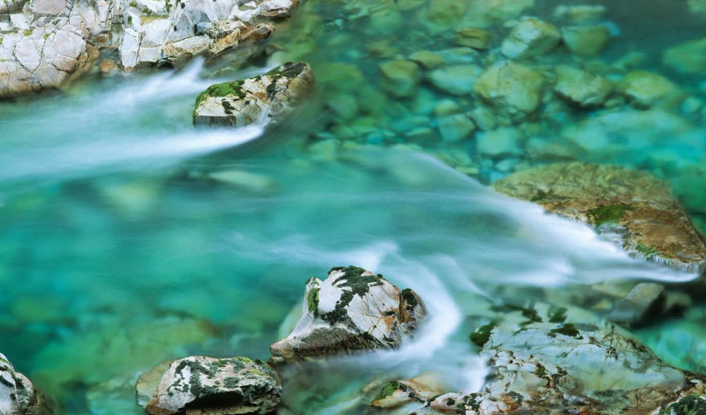 nature, river, elk, full, планом, горного, united, ручья, крупным, красивое, states, pack, images,
