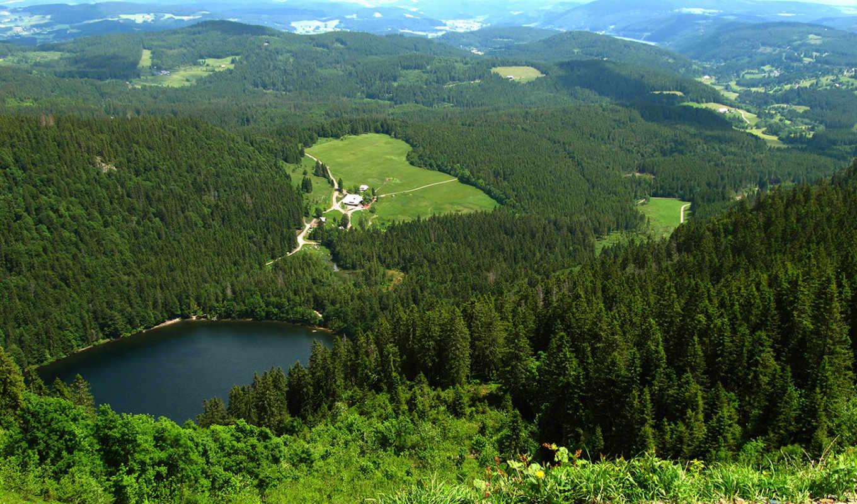 black, лес, германия, german, map, sorry,