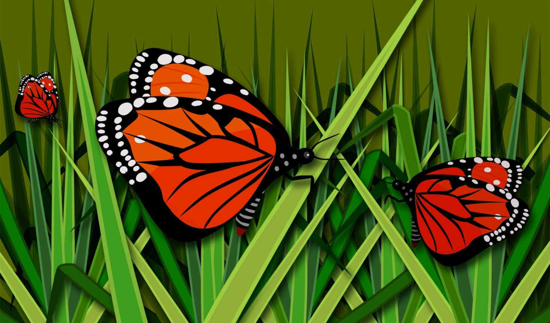 бабочки, страницу, бабочка, июня, рисованные,