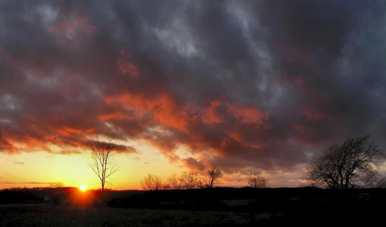oblaka, небо, browse, закат, sun, тяжелые, дерево, очертания,