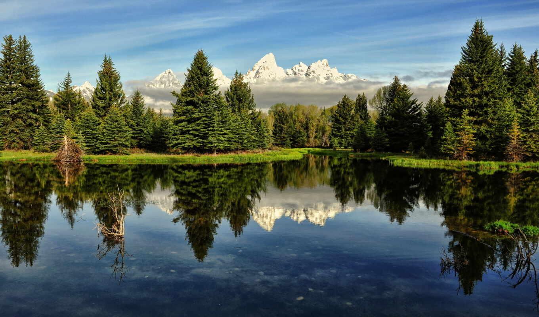 горы, лес, небо, утро, река, сша, картинка, озеро,
