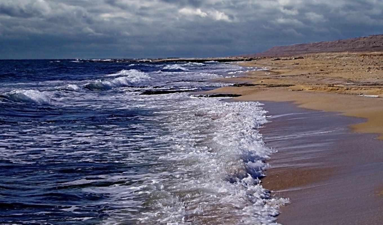 море, река, fish, речная, моря, реки, томаш, design,
