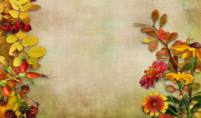 daily, листья, осень, заставки, vous, цветы, фон, vintage, des, только, осенние, ягоды,