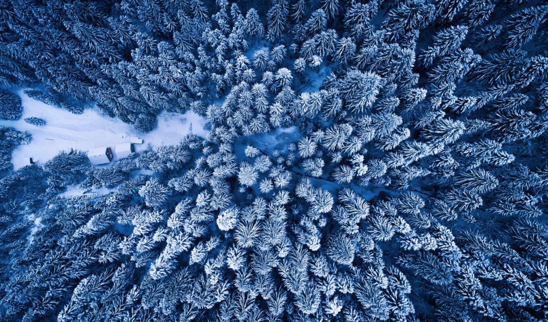 les, let, вид, сверху, prince, зимний, oblako, risunok, originalnyi, razreshenie, дерево
