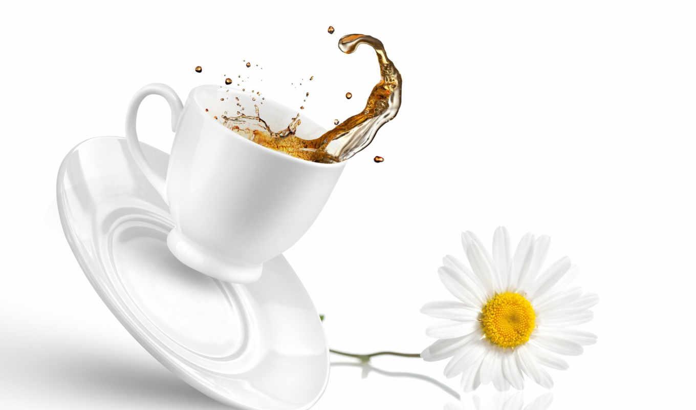 чая, cup, блюдце, напитки, еда,