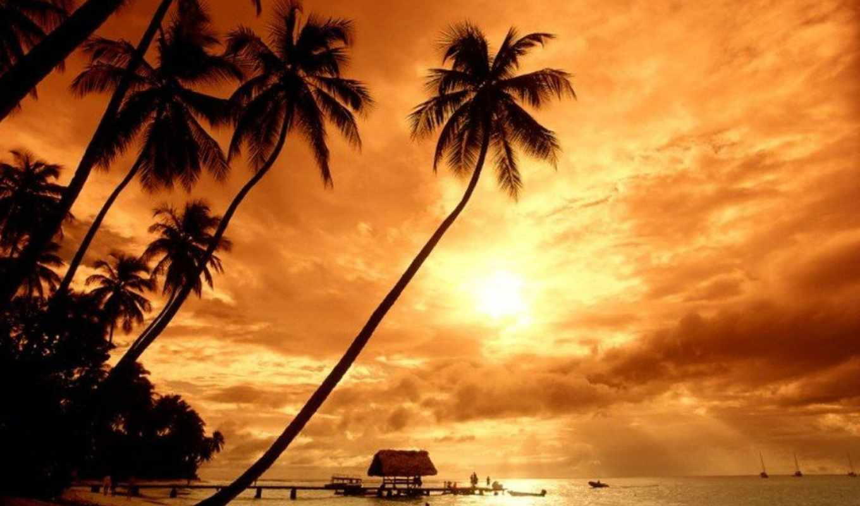 закат, красивый, вас, pictures, entertainment, если, выбираете, закаты, окружают, вещи,