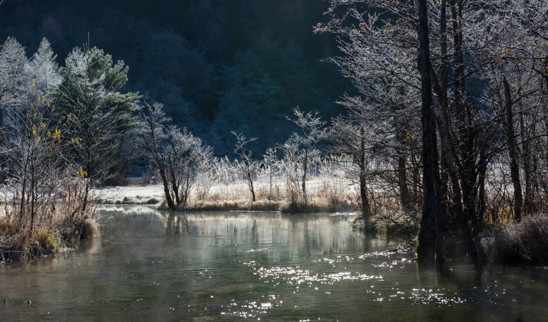 фон, id, природы, красивой, дек, пейзажи -, times,