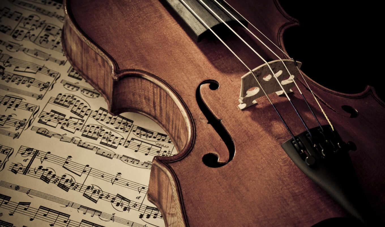 ,concert, ноты, department, скрипка,