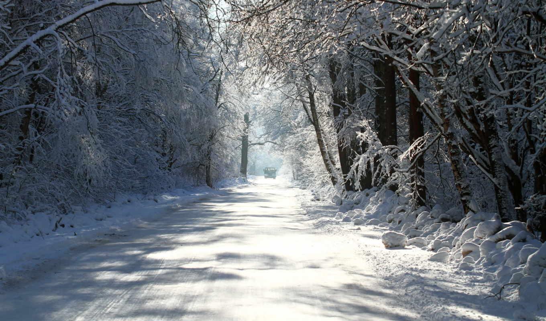 зима, деревья, дорога, картинку, картинка, кнопкой, мыши,