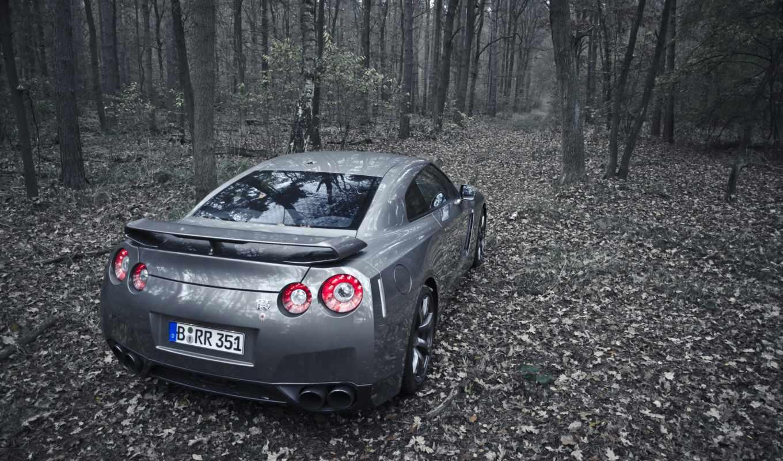 nissan, машина, авто, gtr, лес, природа, огни, stop, серебристая, деревья,