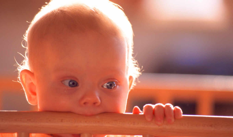 зубки, режутся, ребенка, помощь, когда, первые, зубы,