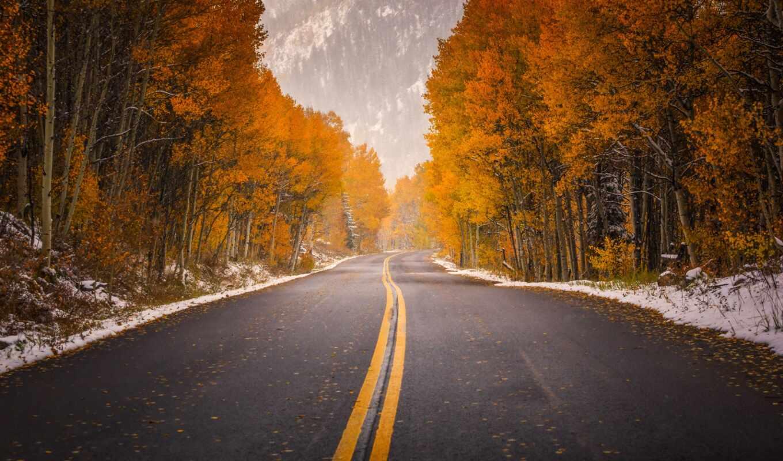 аспен, осень, дорога, колорадо, сша,