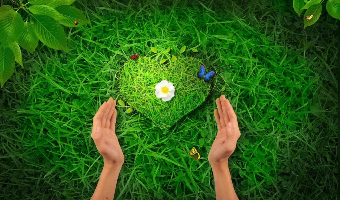,природу, природой, сердце, добрые, берегите, трава,