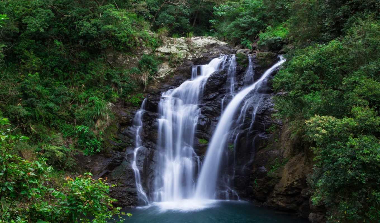 водопад, лес, desktop, природа, summer, greenery, high,