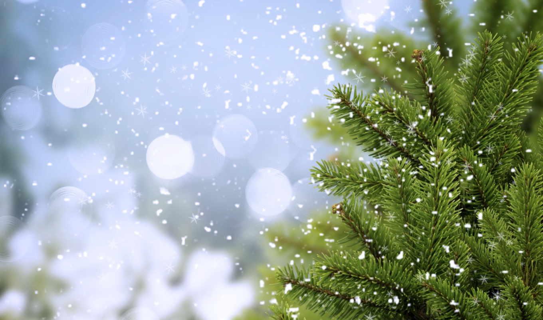 снежинки, снег, winter, года, этом, time, разделе, елочки, елочка,