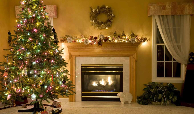 new, украсить, красивый, новый год, праздник, елка, decoration, год, новое