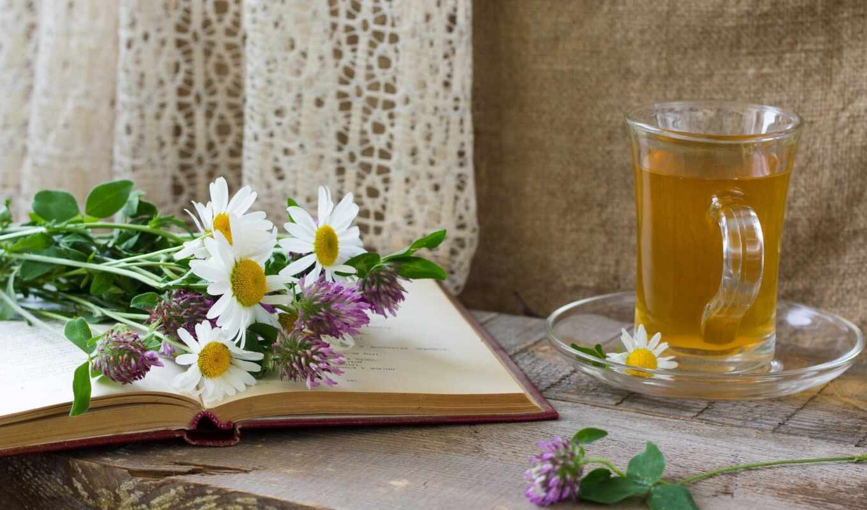 чай, блюдце, книга, чашка, ромашки, лук, нравится,
