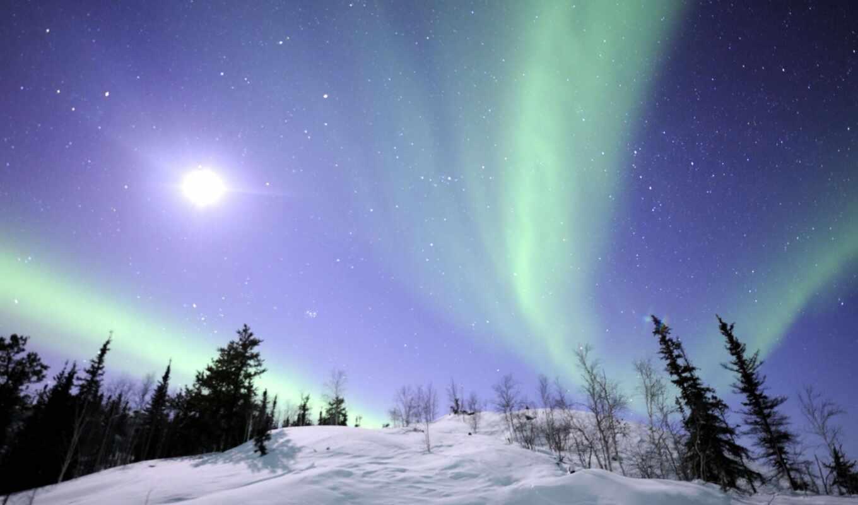 сияние, severnyi, снег, небо, priroda, дерево, звёздный, kanada, полярный