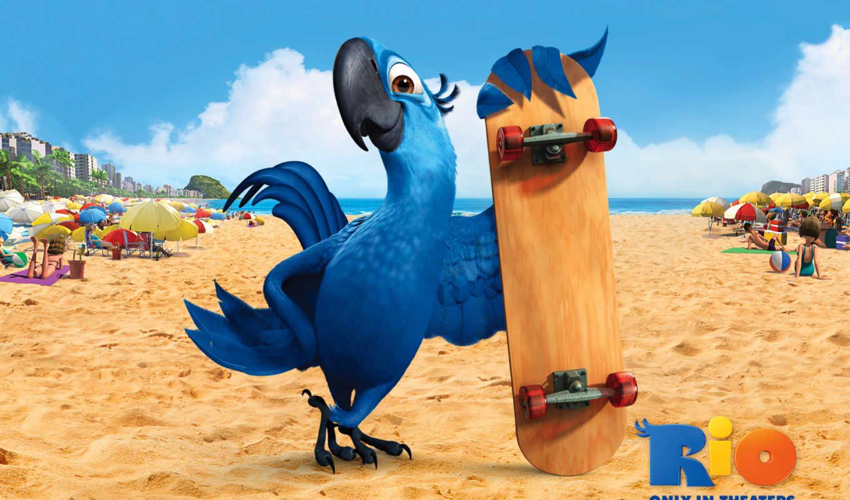 rio, песок, попугай, пляж,