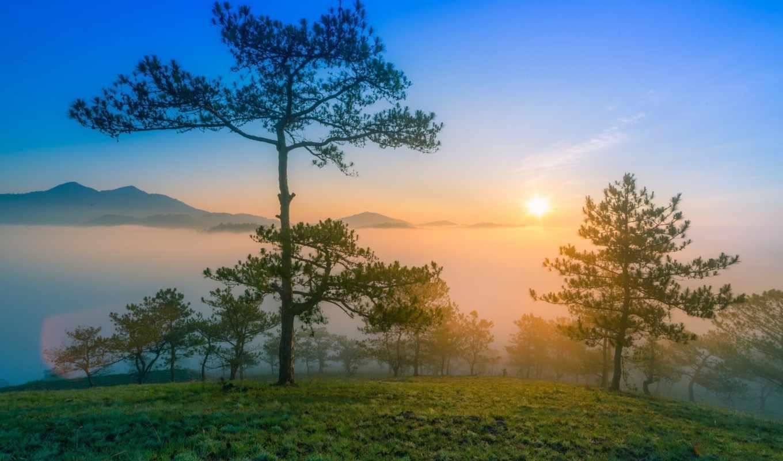 утро, туман, scenery, desktop, рассвет, природа, mountains,