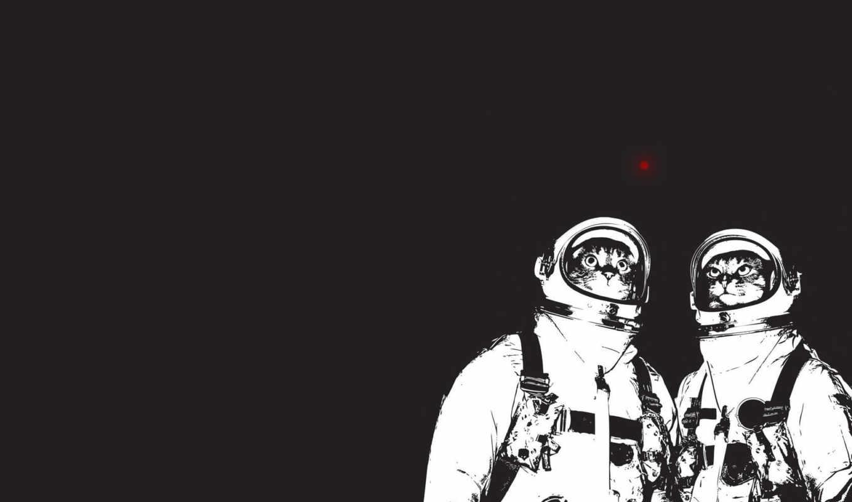 космонавты, cat, коты, haircut, have, with, merlin, минимализм, барбитурный, funny, images, astronaut, два, космос,