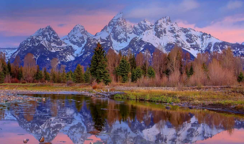 grand, national, park, teton, wyoming, пейзажи -, лес,