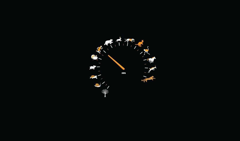 speedometer, , fun, pack, minimalistic, desktop,