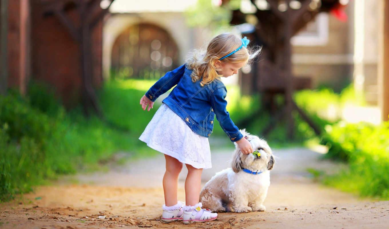 собака, девочка, собака, цветы, парк, клумба