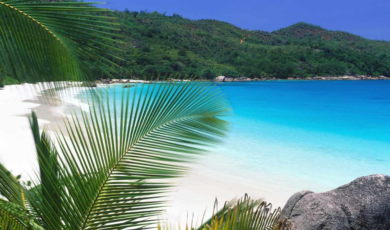 seychelles, islands, остров, африка,