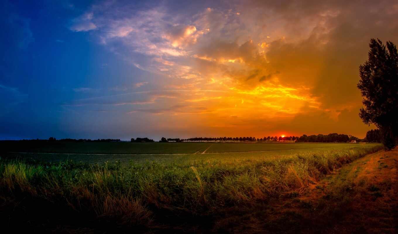 поле, campo, oir, сол, pantalla, закат