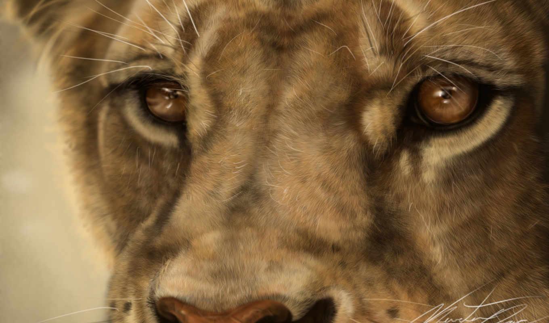 львица, lion, art, кошки, львы, кот, хищник, zhivotnye, морда, дикие,