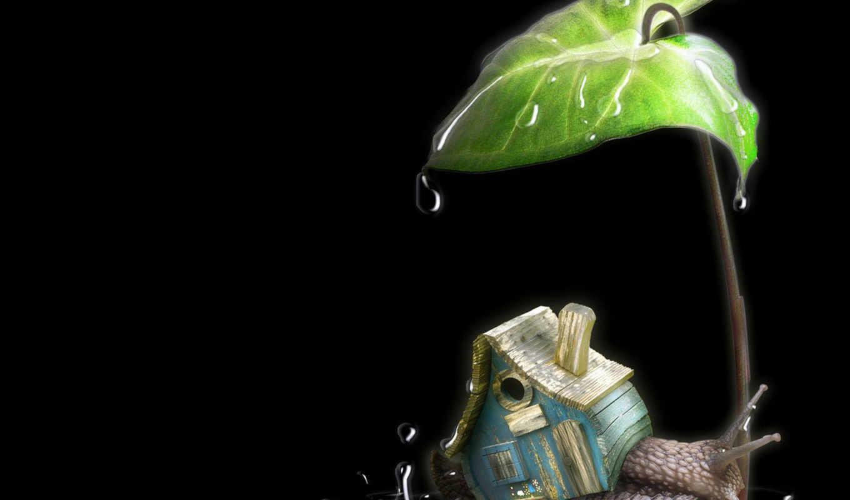 улитка, домик, капли, листок, дождик, красивые, turbobit, mix, смотрите, casa, разное, have, which,