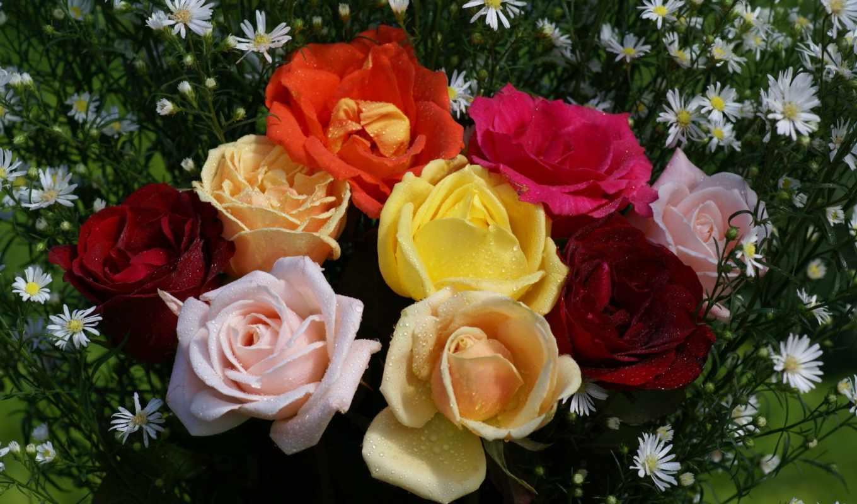 Картинки букетов роз для телефона