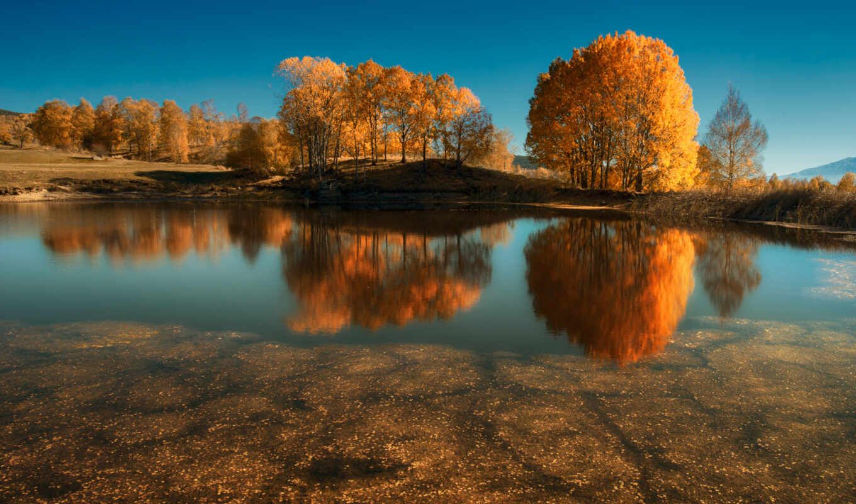 oir, озеро, fon, природа, mobiotrazhenie, дерево