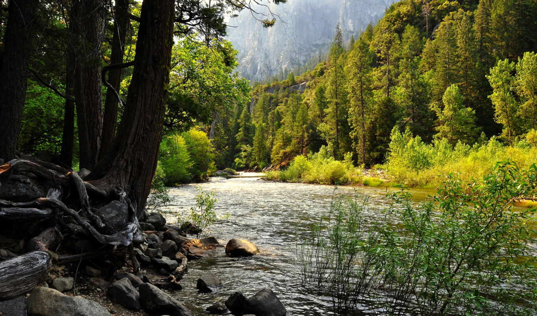 reka, priroda, les, горы, камни, скалы, горная, деревя,