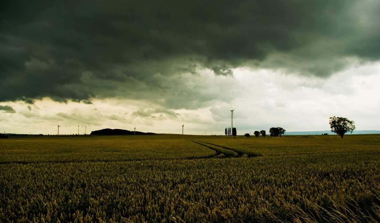 тучи, поле, небо, серое, хмурое, мрачные, дорога, виды, красоты, trees,