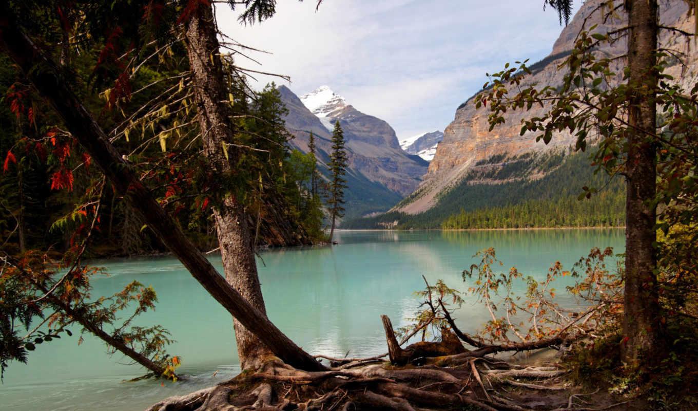 ,горы, река, лес,