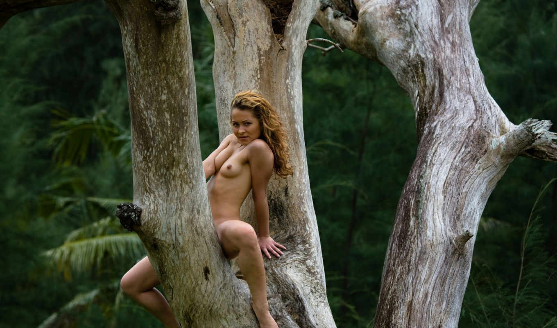 купить, голая, дереве,