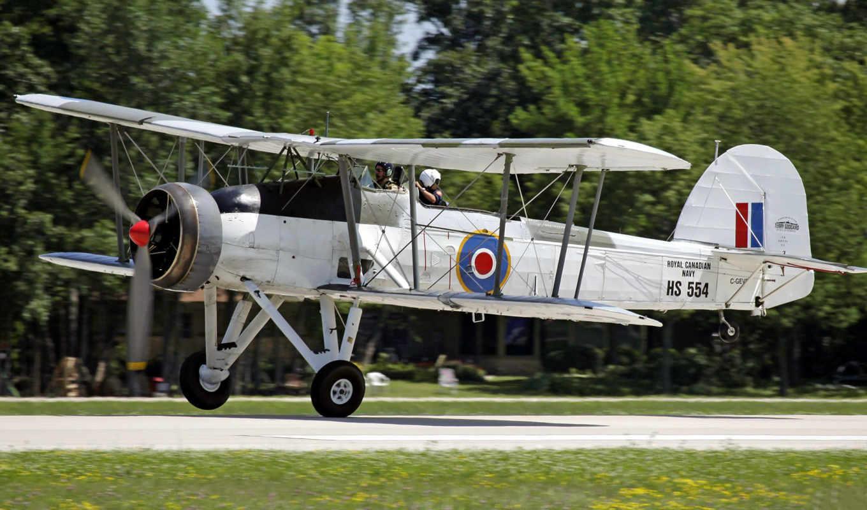 plane, swordfish, fairey, biplane, air,