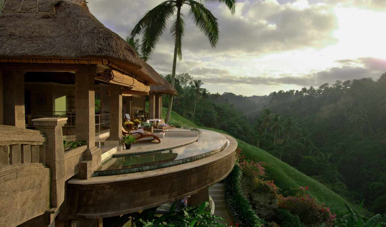 house, hotel, bali, красивый, лес, hanging, garden, palm, lodge