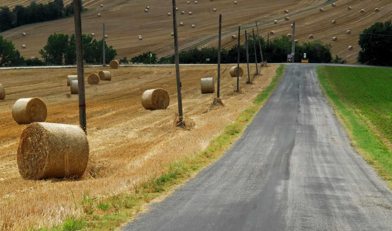 дорога, поле, сено, фон, природа, осень, country, небо, тег, есть,