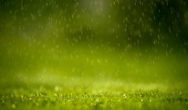 rain, spring, drops, background, капли, pictures, февр, трава, natureza,
