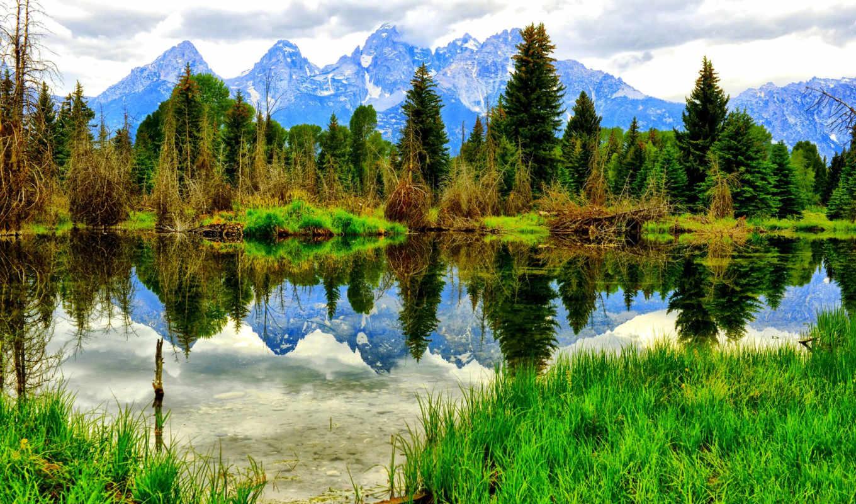 природа, зимняя, горы, photos, нояб, лес,