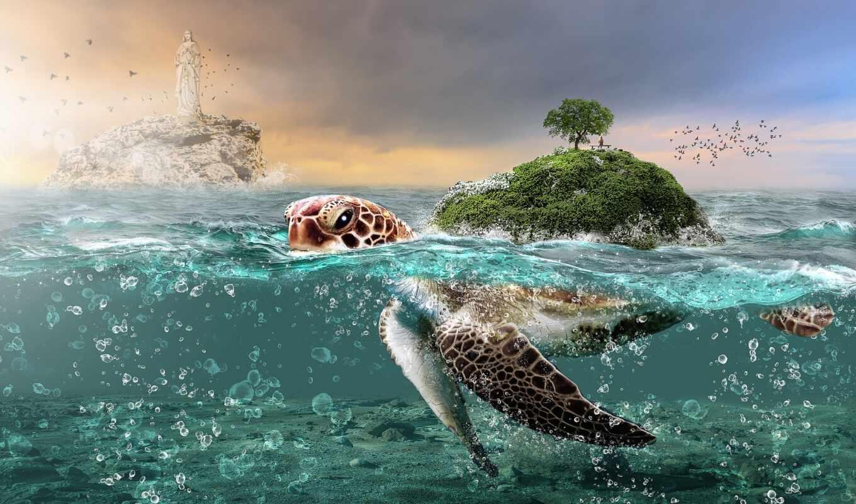 музыка, остров, существо, черепаха, спать, друг, море, fantasy, underwater